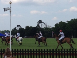 Watching polo at the Guards Polo Club Windsor